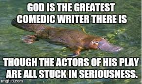 Platypus Meme - platypus by strongly opinionated platypus meme generator imgflip