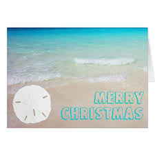 tropical christmas cards sand dollar tropical christmas cards zazzle