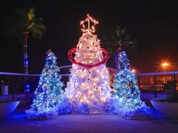 12 outdoor lighted christmas trees ideas all about home design