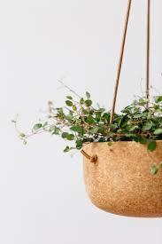 miracle cork melanie abrantes u0027 pots and planters gardenista