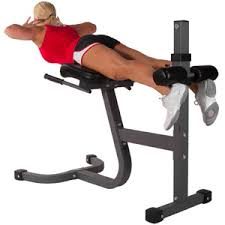 Professional Weight Bench Residential Strength Training Fitness Showcase Exercise Fitness