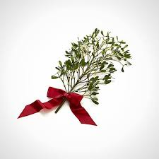 where to buy mistletoe 20 eye catching centerpieces to buy diy brit co