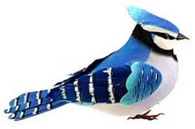 6 1 2 feathered blue artificial bird birds butterflies