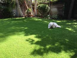 is it good to use synthetic grass in san diego best turf san diego