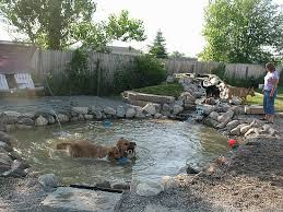 Backyard For Dogs by Best 25 Dog Pond Ideas On Pinterest Cattle Trough Dog Pools