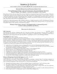 Extensive Resume Sample by Operating And Finance Executive Resume
