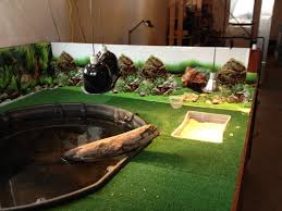 fish tank diy turtle tank water turtles aquatic fearsome photos full size of fish tank the headbanging harrier diy turtle resort tank cleaner ideas filter decorationsdiy