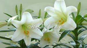 easter greeting cards religious free christian easter wallpaper wallpapersafari