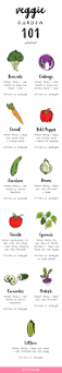 illinois native plant guide check out this 101 guide for how to plant a veggie garden