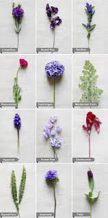 wedding flowers list and wedding flowers