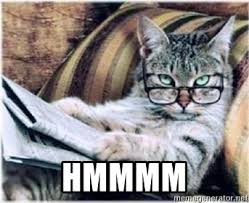 Newspaper Cat Meme - hmmmm newspaper cat meme generator