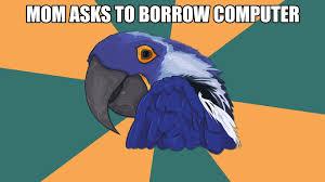 Anxiety Cat Memes - parrot memes