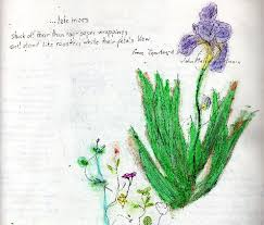 Flowersbybillbush Montreal Postal Code Map - human flower project speak fragrance