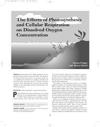 the effects of photosynthesis and cellular respiration on