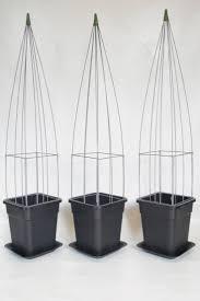 70 best easy plant pillar www easyplantpillar nl images on