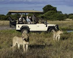 african safari car botswana safari tours u0026 holiday african welcome safaris