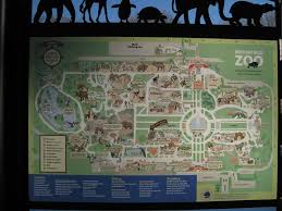 chicago zoo map photo tr a tour of chicago s zoos theme park review