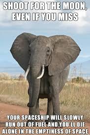 Elephant Meme - misleading motivational elephant meme on imgur