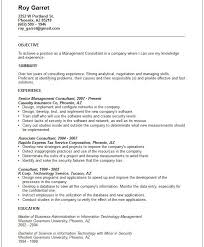 It Risk Management Resume An Essay On My Dream Examples Of Resume Objectives For