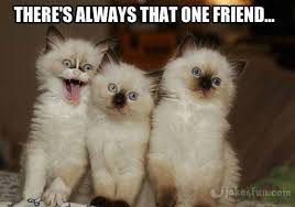 Funny Friend Memes - joke4fun memes tag your friends on facebook