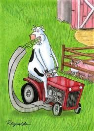 Lawn Mower Meme - lawn mower memes funny lawn mower pictures memey com