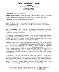 government resume exles government resume exles sle federal attorney template free