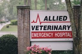 allied veterinary emergency hospital sociallyloved loveblog