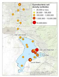 Map Of Provo Utah by Utah Lake Algal Bloom 2016 Utah Department Of Environmental Quality