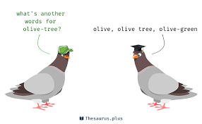 terms olive tree and olive tree similar meaning
