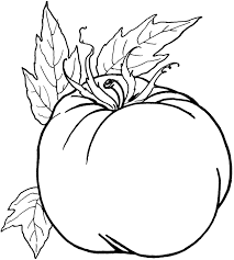 pumpkin vegetables healthy food coloring pages fall coloring