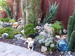 Cactus Garden Ideas Cactus Garden Designs Inspirational Succulent Garden Designs