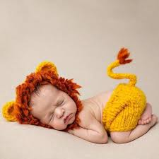 baby costume best 25 baby lion costume ideas on cowardly lion