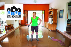 Flood Insurance Premium Estimate by The National Flood Insurance Program Fema Gov