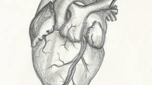 pencil drawing of a heart drawing pencil