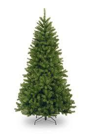 sears outlet trees tree nordmann fir