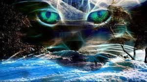 imagenes extraordinarias para fondo de pantalla hd resultado de imagen para imagenes extraordinarias para fondo de