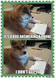 Dog Phone Meme - it s a dog answering a phone i don t get it hello quickmeme