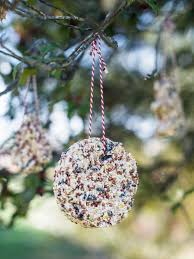 craft bird seed ornaments hgtv