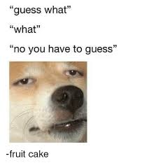 Fruitcake Meme - guess what what no you have to guess fruit cake meme on me me