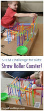 26 best roller coaster science project images on pinterest