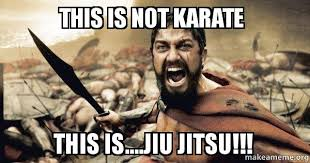 Karate Meme - this is not karate this is jiu jitsu the 300 make a meme