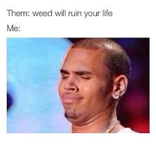 Funny Memes About Weed - the funniest marijuana memes for this week