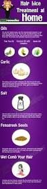 best 20 head lice nits ideas on pinterest lice prevention