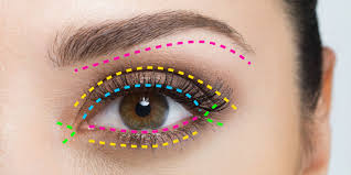 eye makeup guide for beginners u2014 a map for eyeshadow and eyeliner