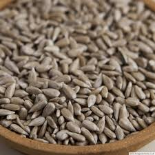 premium sunflower hearts for wild birds 20kg 20 49 25kg 24 99