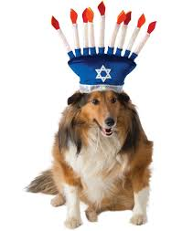 chanukah hat menorah pet hanukkah hat costume zoo