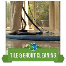 Upholstery Cleaning Tucson Home Ecogreen Carpet Care