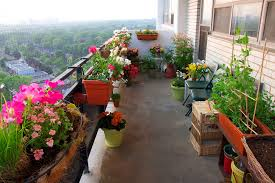 Balcony Garden by Various Kind Of Beautiful Flowers For Balcony Garden Planted In