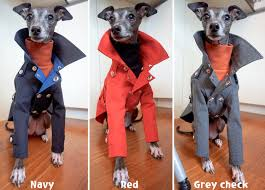The Italian Chandelier Sex Position by Italian Greyhound Appareltrench Coat