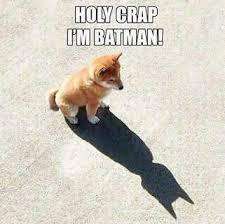 Batman Funny Meme - batman funny meme funny memes